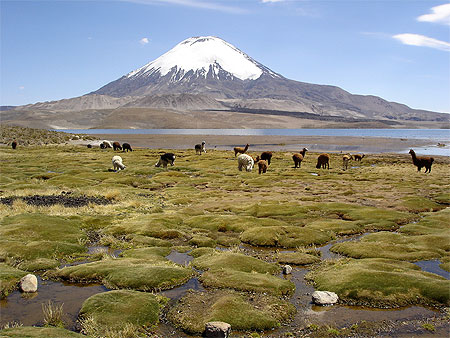 Parc national Lauca
