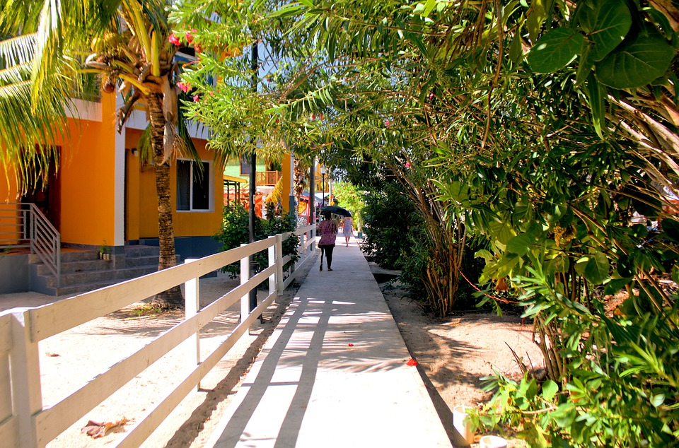 """ The Placencia Sidewalk"""